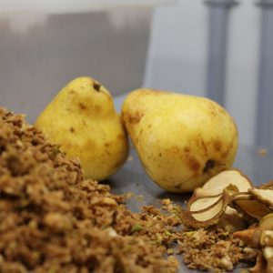 dehydrated-organic-quebec-organic-pears-diced